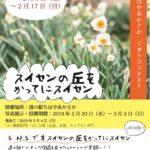 2月7日『朝日新聞』で「千早赤阪村フォトコンテスト スイセンの丘をかってにスイセン!」が紹介されました。