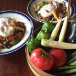 村野菜がおいしい季節ですー!