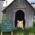 夏季休業8/21(水)&22(木)&23(金)道の駅ちはやあかさか
